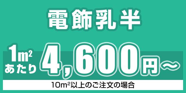 電飾乳半 10㎡以上 4600円